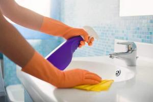 شركات النظافة بالطائف