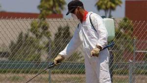 رش مبيدات بمكة