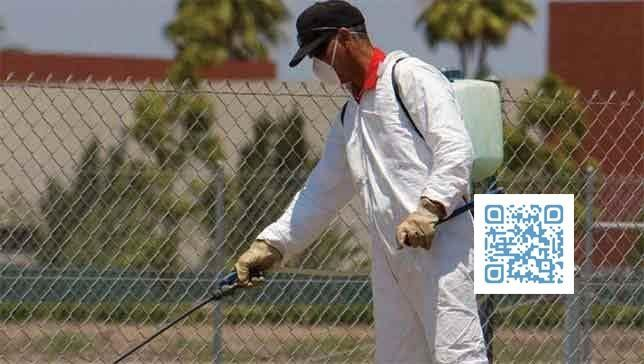 شركة مكافحة حشرات بمكة